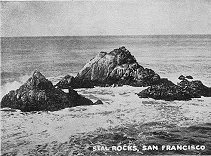 Seal Rocks, San Francisco